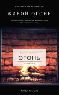http://svetlanafeya.ru/ogon